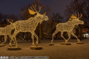 december-reindeer-flickr-120374925@N06-15959692199-cc-by-sa-licensed