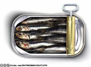 sardines-flickr-98478823n02-9219714703-cc-by-nc-licensed